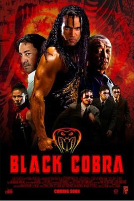黑色眼镜蛇( 2012 )