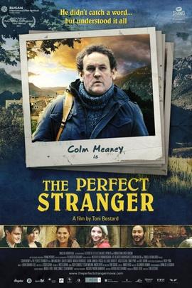 完美的陌生人( 2011 )