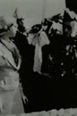 公共事务( 1934 )