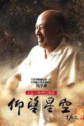 仰望星空( 2012 )
