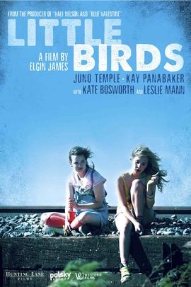 我们是一群小小鸟( 2011 )