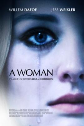 一个女人( 2010 )
