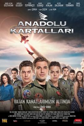 安纳托利亚之鹰( 2011 )