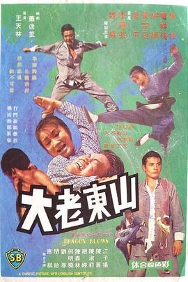 山东老大( 1974 )