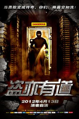 盗亦有道( 2009 )