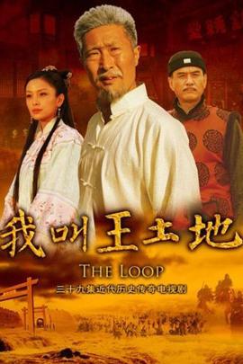 我叫王土地( 2012 )