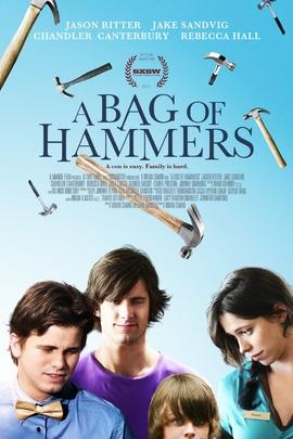一袋锤子( 2011 )