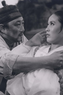 女人之门( 1972 )