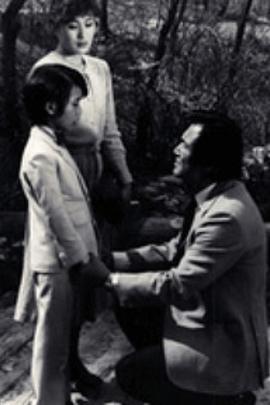 痛也要再爱一次81( 1981 )