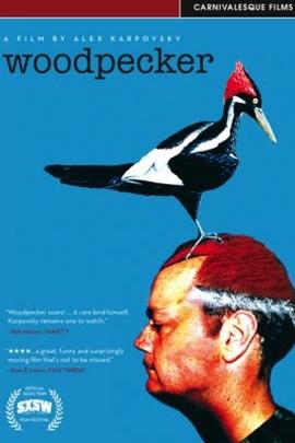啄木鸟( 2008 )