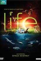 生命脉动/Life(2009)