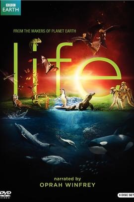 生命脉动( 2009 )