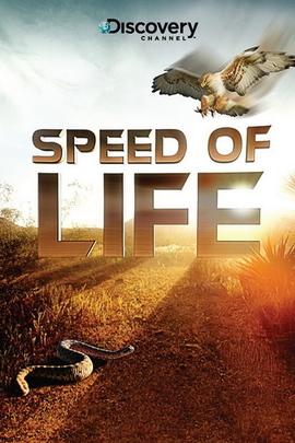 探索频道:生命的速度(  )