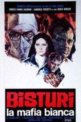 护士的秘密( 1973 )