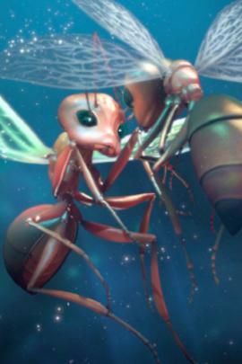 蚂蚁( 2012 )