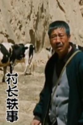 村长轶事( 2009 )