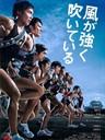 强风正劲/Kaze ga tsuyoku fuiteiru(2009)