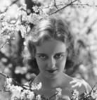 写真 #14:贝蒂·戴维斯 Bette Davis