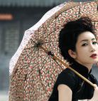 写真 #89:秦海璐 Amanda Qin