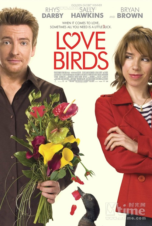 爱情鸟Love Birds(2011)海报 #01