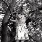 写真 #118:派珀·佩拉博 Piper Perabo