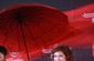 生活照 #42:苏珊·萨兰登 Susan Sarandon