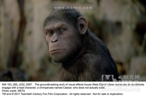 猩球崛起Rise of the Planet of the Apes(2011)剧照 #10