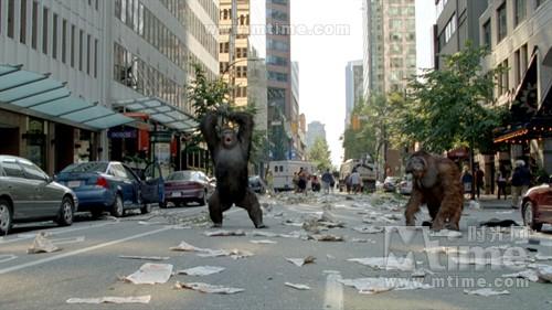 猩球崛起Rise of the Planet of the Apes(2011)剧照 #31