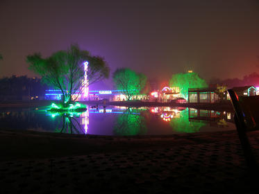 枫花园夜景